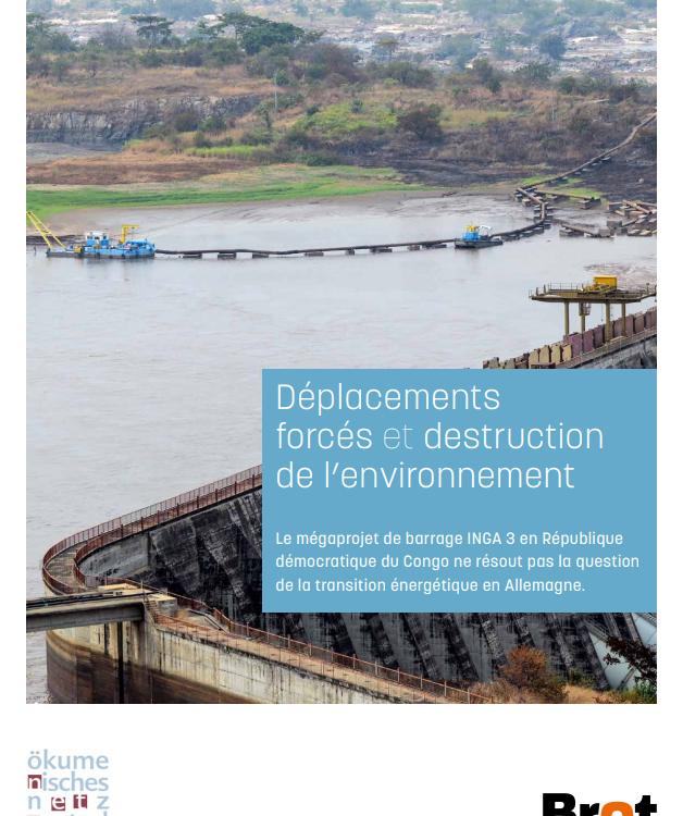 Déplacements forcés et destruction de l'environnement